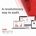Anglia enables detailed remote quality audits
